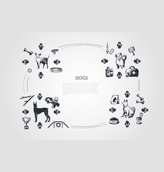 Dogs - different dog breeds with food bones vector
