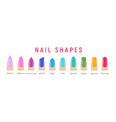 nail shapes manicure art fingernail shape vector image