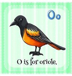 Oriole vector