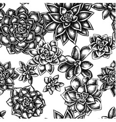 seamless pattern with black and white succulent vector image