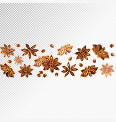 Seamless star anise border quality realistic vector