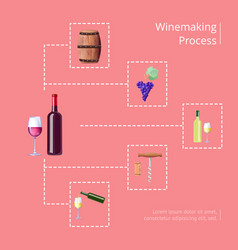 winemaking process on red vector image
