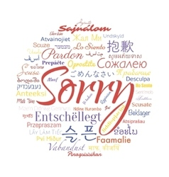 sorry foreign languages vector image