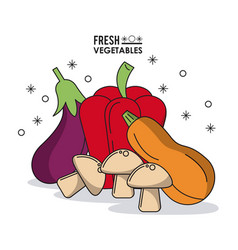 colorful poster fresh vegetables eggplant peppers vector image