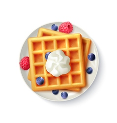 Breakfast Waffles Realistic Top View Image vector image
