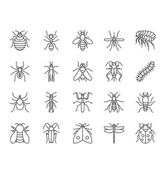 danger insect simple black line icons set vector image