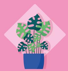 decorative plants flat image design vector image