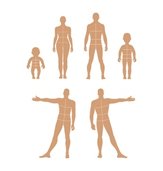Full length front back human silhouette vector image