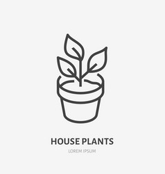 house plant in pot flat line icon thin vector image
