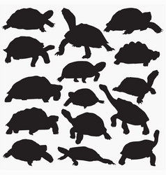 Tortoise silhouettes vector