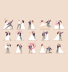 wedding couples bride in wedding dress just vector image