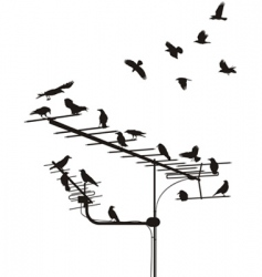 crows on the antenna vector image