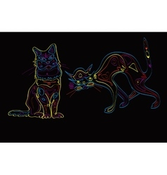 Couple Of Neon Cats vector image