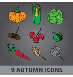 autumn fruit icons eps10 vector image