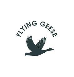 Flying geese goose logo silhouette logo design vector