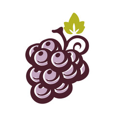 Grape icon with leaf vector