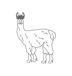 Llama in boots outline vector