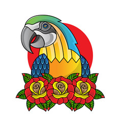 traditional flash parrot tattoo vector image
