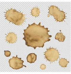 coffee stain collection vector image vector image