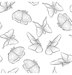 Beautiful butterfly flying coloring book seamless vector