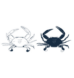 Blue swimmer crab silhouette hand drawn outline vector