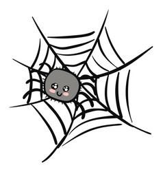 cartoon a cute grey spider on a web on white vector image