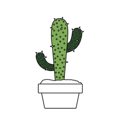 color sections silhouette of cactus with two vector image