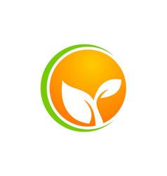 leaf ecology plant icon logo vector image