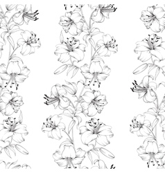 Lily flower pattern vector image