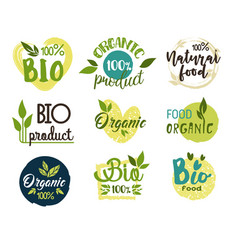 natural and organic eco and fresh food stickers vector image