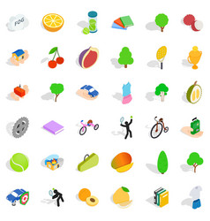 Necessary icons set isometric style vector