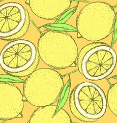 Sketch juicy lemon in vintage style vector