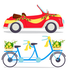 wedding fashion transportation traditional auto vector image
