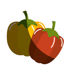 Yellow pepper and red pepper vegetable icon vector