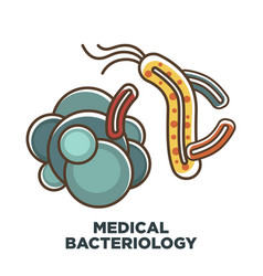 viruses and bacteria icon for medical vector image vector image