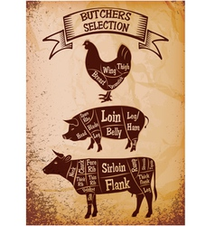 Butchers selection vector
