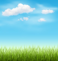Green Grass Lawn with Clouds on Blue Sky vector