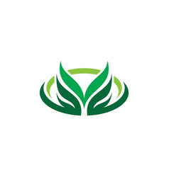 oval leaf eco nature logo vector image