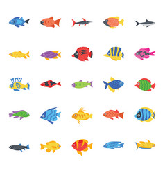 set fishes flat icons vector image