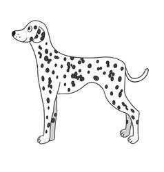 cute cartoon dalmatian isolated on white vector image
