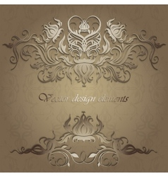 elegant patterns on a seamless background vector image vector image