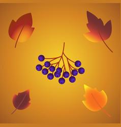 autumn leaf foliage icons of oak acorn maple or vector image
