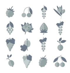 Black white gray icons of berries set vector