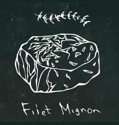Filet mignon steak cut isolated on vector