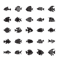 fishes glyph icons set vector image