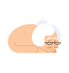 Grandmother with cat body cat with grandma head vector
