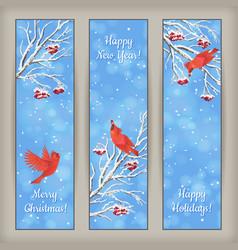 Vertical Christmas Banners Bird Rowan Branches vector image