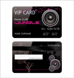 VIP club card vector image