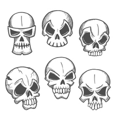 Artistic skeleton skulls sketches icons vector image