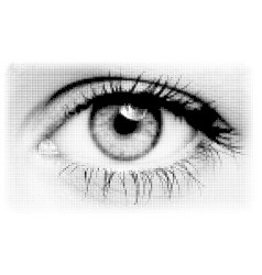 black halftone eye vector image
